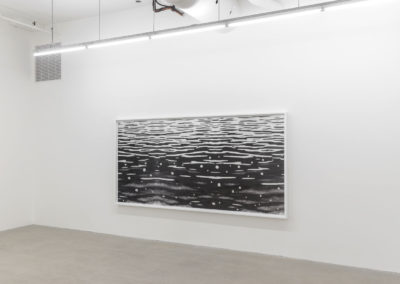 Geneviève Cadieux, Flow (négatif), 2015 impression au jet d'encre pigmentée sur papier baryté Hahnemühle, feuilles d'aluminium 156,2 x 321,3 cm / 61.5 x 126.5 pouces  Crédit Photo : Guy L'Heureux