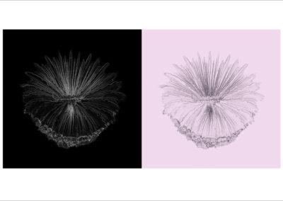 Geneviève Cadieux, Le jour et la nuit, 2012 Édition 2/5 impression au jet d'encre pigmentée sur papier chiffon photo Hahnemühle 14.4 x 25.7 pouces