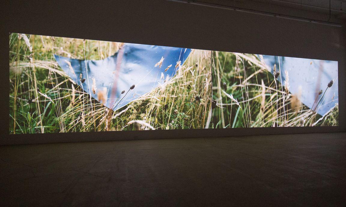 Marie-Claire Blais et Pascal Grandmaison LA VIE ABSTRAITE : LE TEMPS TRANSFORMÉ, 2015 Deux projections synchronisées, 40 minutes, LA VIE ABSTRAITE Vues d'installation (2016) Marie-Claire Blais et Pascal Grandmaison, Vue d'installation Galerie René Blouin, 2016