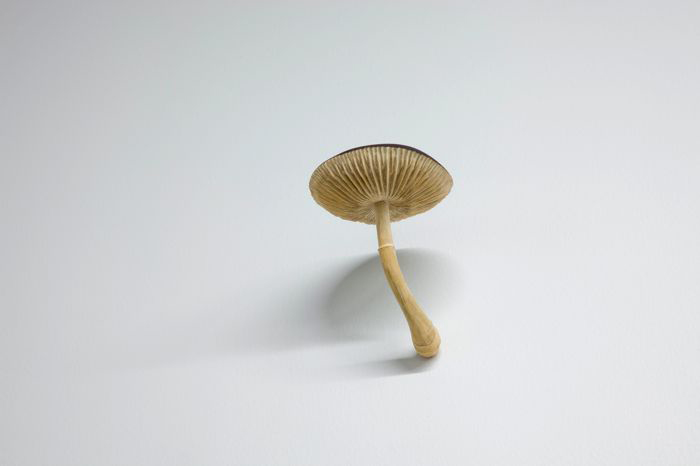 """Yoshihiro Suda, Mushroom, 2009 bois sculpté, installation, dimensions variables Vue de l'exposition (2012) Photo: Richard-Max Tremblay, """"Ciels,"""" Vue de l'exposition 23 juin - 18 août 2012"""