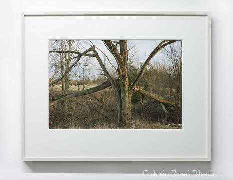 Geoffrey James, ÎLE-DU-GRAND CALUMET, 2011 édition 1/8 impression pigmentaire 43,2 x 55,8 cm / 17 x 22 pouces, 25 ans : Exposition de groupe, Vue de l'exposition (2011) Photo: Richard-Max Tremblay