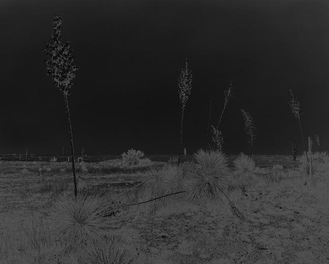 Marfa (la nuit), 2015, éd 1/2 impression au jet d'encre pigmentée, sur papier baryté Hahnemühle, 154,9 x 185,4 cm / 61 x 73 pouces, Geneviève Cadieux, Vue de l'exposition (2015) Photo: Guy L'Heureux