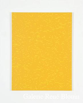 Francine Savard, Tableau déterminé C = 13 % 2007 Acrylique sur toile marouflée sur contreplaqué russe 78,5 x 60,5 cm, Vue de l'exposition, 2 x 100% (2007)