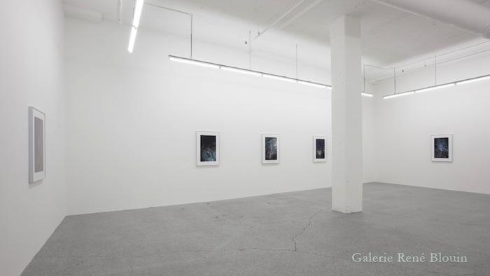 Vue de l'exposition: Pascal Grandmaison 12 octobre au 23 novembre 2013, Photo: Pascal Grandmaison