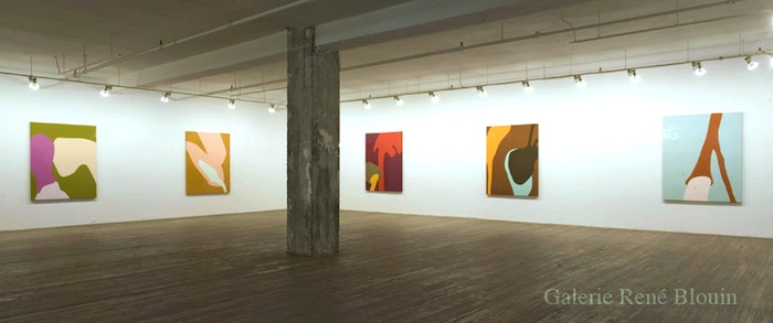 Daniel Langevin vue d'installation - Stianes, 2007