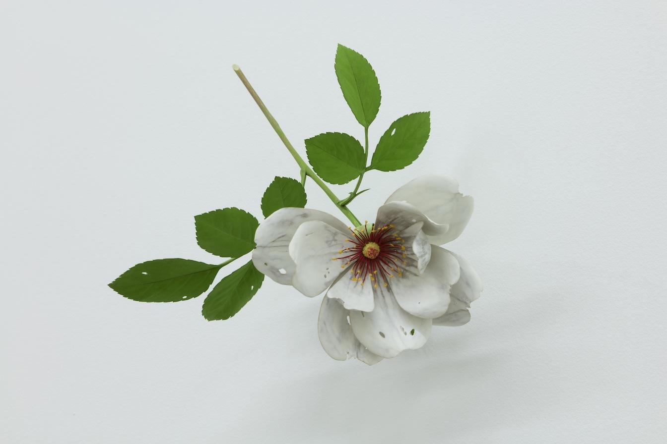 Yoshihiro Suda Rose, 2016, cinq éléments, bois de magnolia, pigment et médium, dimensions variables, Vue de l'exposition : Yoshihiro Suda & Francine Savard 2016, Crédit photo : Guy L'Heureux