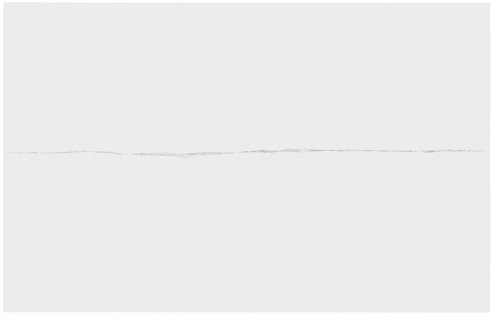 Marie-Claire Blais, Malgré-moi 1, 2006 mine de plomb sur papier Stonehenge monté sur carton muséologique, 127 x 203,2 cm / 50 x 80 poucesDesign Paradigm 3.2, Vue de l'exposition, Blancs Marie-Claire Blais   Geneviève Cadieux   Chris Kline 28 juin au 20 septembre 2014, Crédit photo : Guy L'Heureux