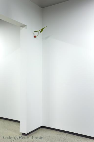 Yoshihiro Suda, Tulip, 25 ans : Exposition de groupe, Vue de l'exposition (2011) Photo: Richard-Max Tremblay
