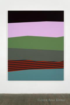 Palissade (XI), 2011 acrylique et huile sur toile 190,5 x 152,4 cm / 75 x 60 pouces, Vue de l'exposition (2011), Daniel Langevin, Photos: Richard-Max Tremblay