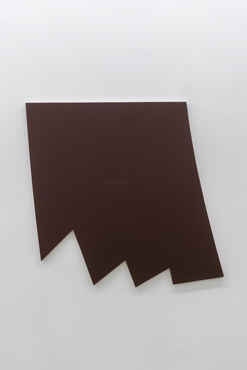 Francine Savard, Un champ rouge, 2002, Vue d'installation : Géométries (2016) Daniel Langevin   Pierre Dorion   Francine Savard Crédit photo : Guy L'Heureux