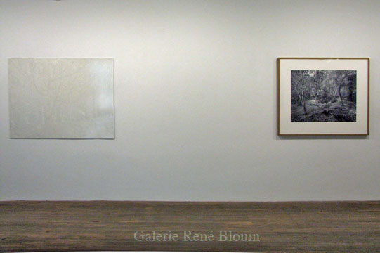 GRIS, vue d'installation, 2007 Nicolas Baier, Geoffrey James
