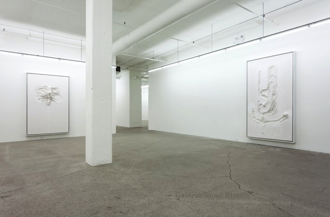 David Altmejd, Vue de l'exposition (2015) Photo: Richard-Max Tremblay