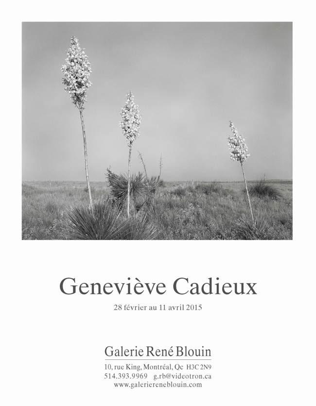 Geneviève Cadieux, INVITATION (2015) Photo: Guy L'Heureux