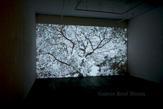 PASCAL GRANDMAISON | Soleil différé Video Vue de l'exposition (2010-2011)  Photo: Richard Max Tremblay