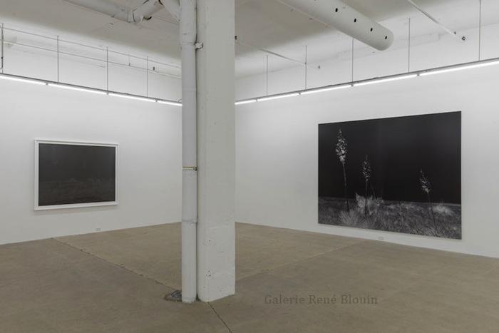 Geneviève Cadieux, Vue de l'exposition (2015) Photo: Guy L'Heureux