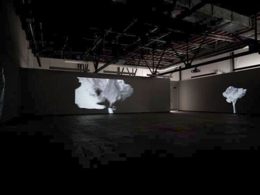 Pascal Grandmaison : Projections 2011