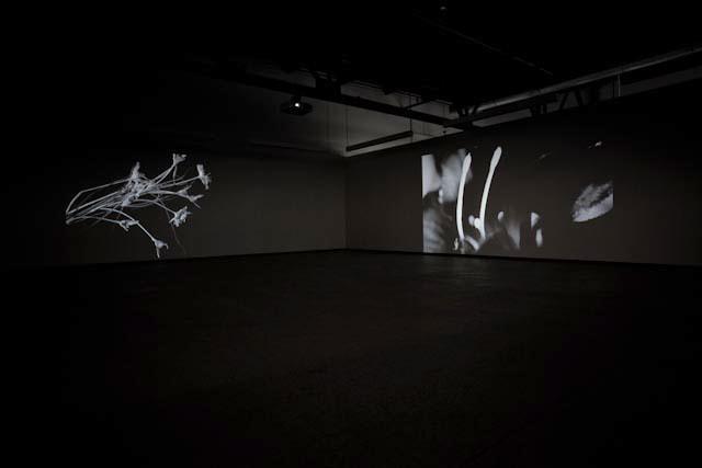Pascal Grandmaison : Projections, Vue de l'exposition (2011) Photo: Richard-Max Tremblay