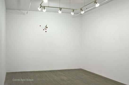 Yoshihiro Suda, Vue de l'exposition (2009)   Photo: Richard-Max Tremblay
