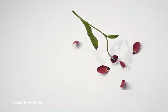 Tulip, 2001 (fleur en bouton) bois peint dimensions variables selon le lieu, Yoshihiro Suda, Vue de l'exposition (2009)   Photo: Richard-Max Tremblay