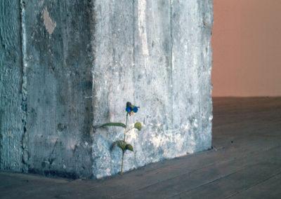 Yoshihiro Suda 2000