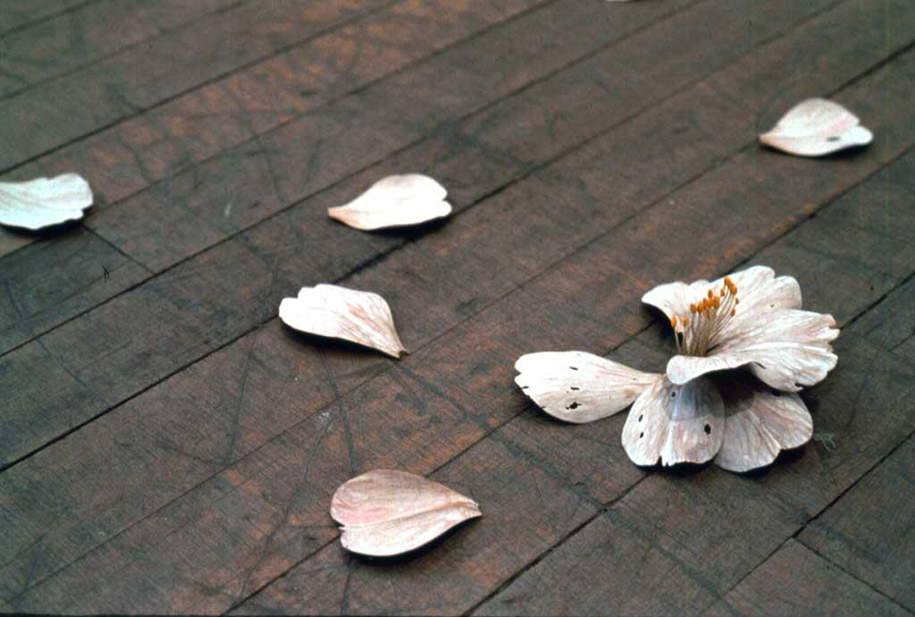 Yoshihiro Suda 28 septembre - 4 novembre 2000
