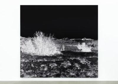 Geneviève Cadieux, Ghost Ranch, 2016, impression au jet d'encre sur papier chiffon rehaussée à la feuille de palladium, 10 x 9,8 pieds