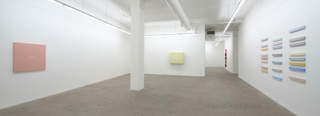 Francine Savard, Vue d'installation, Galerie René Blouin exposition : 25 mars au 6 mai 2017