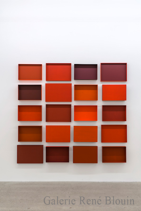 Francine Savard, Truismes 2, 2016, 20 éléments, acrylique sur MDF, 77 x 84,5 x 3,75 pouces - Galerie René Blouin exposition : 25 mars au 6 mai 2017