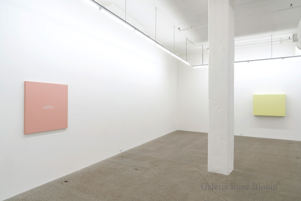 Francine Savard, Vue d'installation - Galerie René Blouin exposition : 25 mars au 6 mai 2017