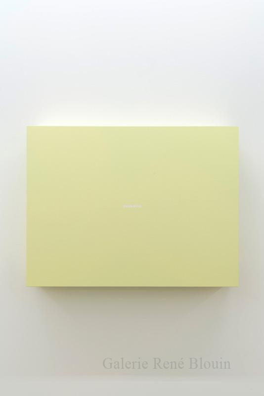 Francine Savard, Ensoleillé (28.06.1999-28.05.2000), 2013, acrylique sur toile sur contreplaqué, 35 x 46,5 x 10 pouces - Galerie René Blouin exposition : 25 mars au 6 mai 2017