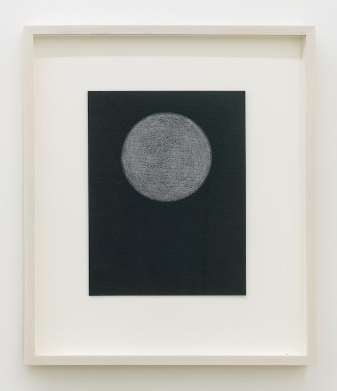 Simon Bertrand, 19 Pear Tree, 2016, Graphite sur papier, 10,5 x 8 pouces