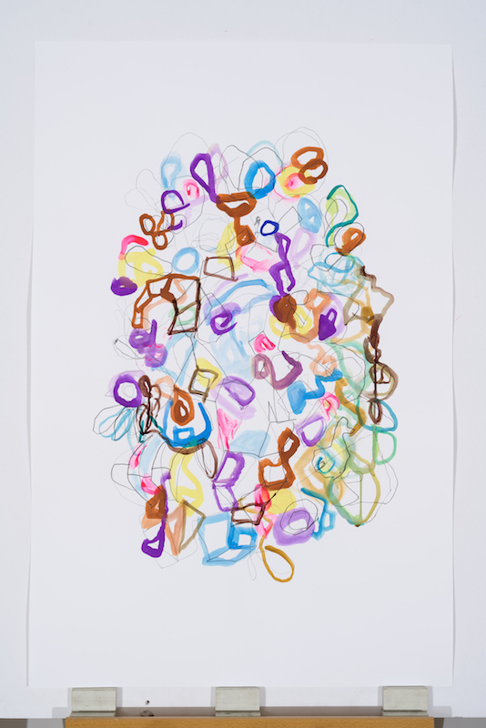 Serge Murphy, Feuillages 2, 2016, Graphite, encre et pastel sur papier, 40 x 26 pouces