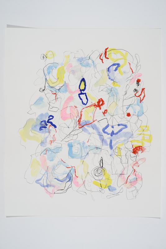 Serge Murphy, Feuillages 25, 2016, Graphite, encre et pastel sur papier, 17 x 14 pouces