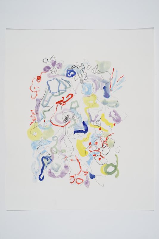 Serge Murphy, Feuillages 26, 2016, Graphite, encre et pastel sur papier, 17 x 14 pouces