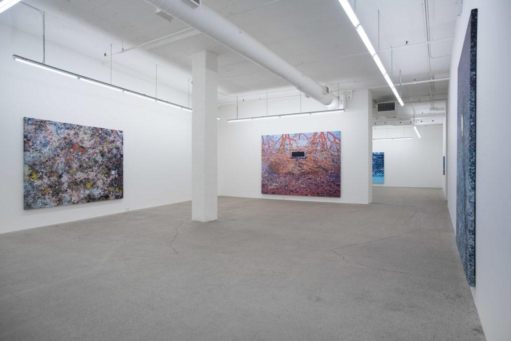 Vue d'installation, PASCAL GRANDMAISON - Galerie René Blouin, 8 juillet au 9 septembre 2017
