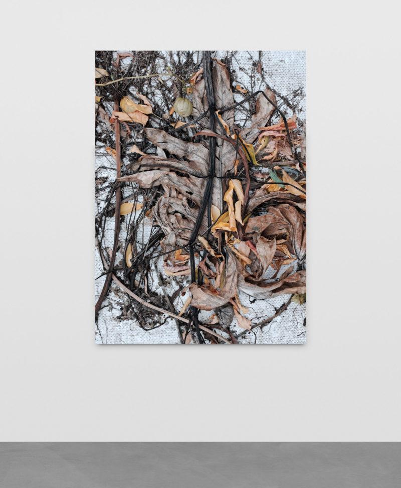 Pascal Grandmaison, REGARD SUR L'ARTIFICIEL, Édition de 3, Impression au jet d'encre sur toile, 178 x 132 cm / 70 x 52 pouces