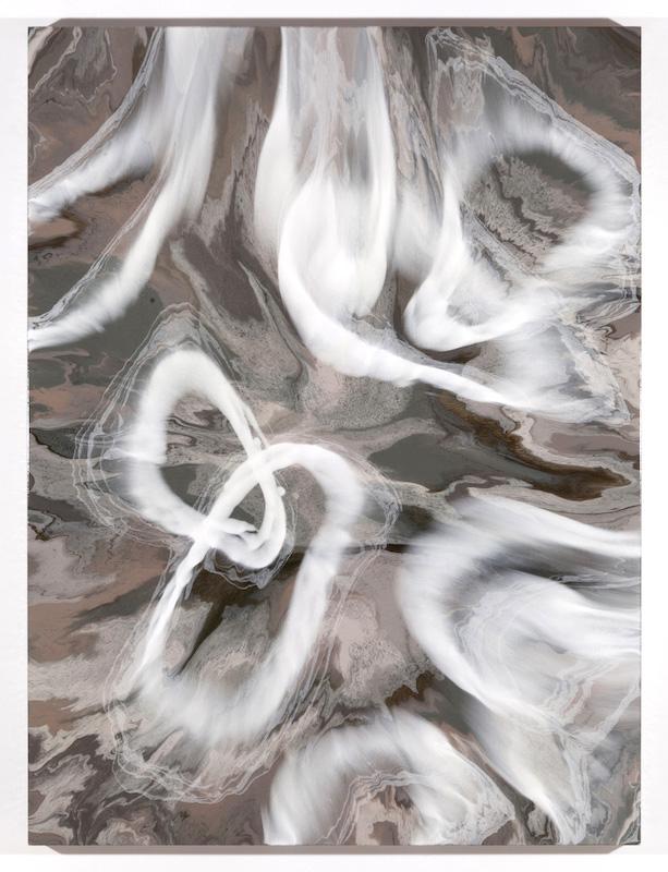 Propagation V, 2017, Encre et acrylique sur toile, 162,6 x 121,9 cm / 64 x 48 pouces