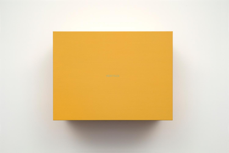 Francine Savard, Venteux (Éléments 3), 2013, Acrylique sur toile marouflée sur contreplaqué, 51,4 x 68,6 x 34,3 cm / 20,5 x 27 x 13,5 pouces