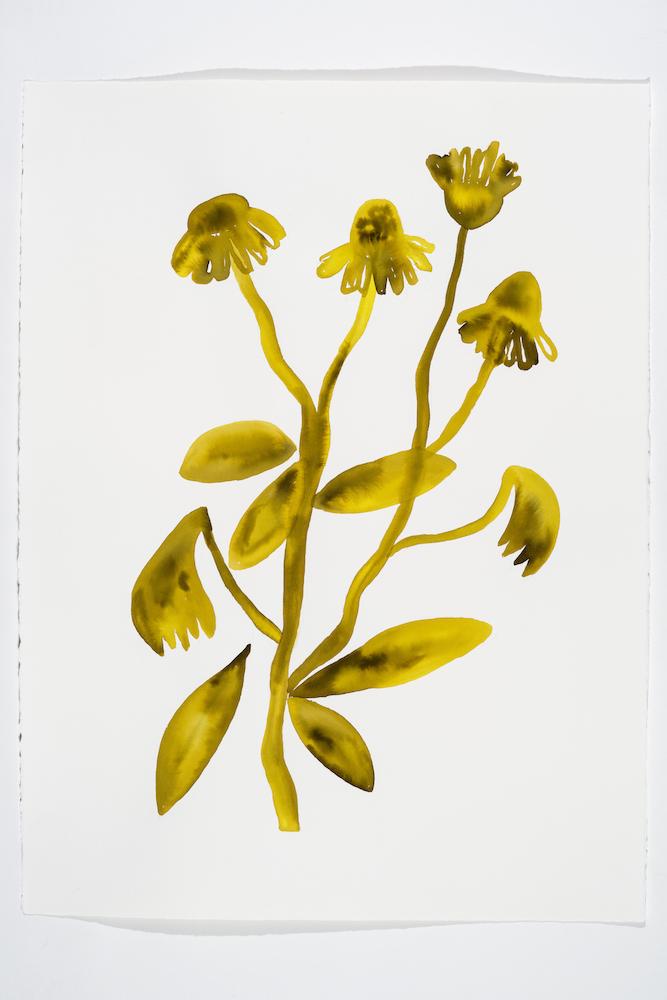 Serge Murphy, Illuminations 12, 2018, Encre sur papier Arches, 77 x 55 cm