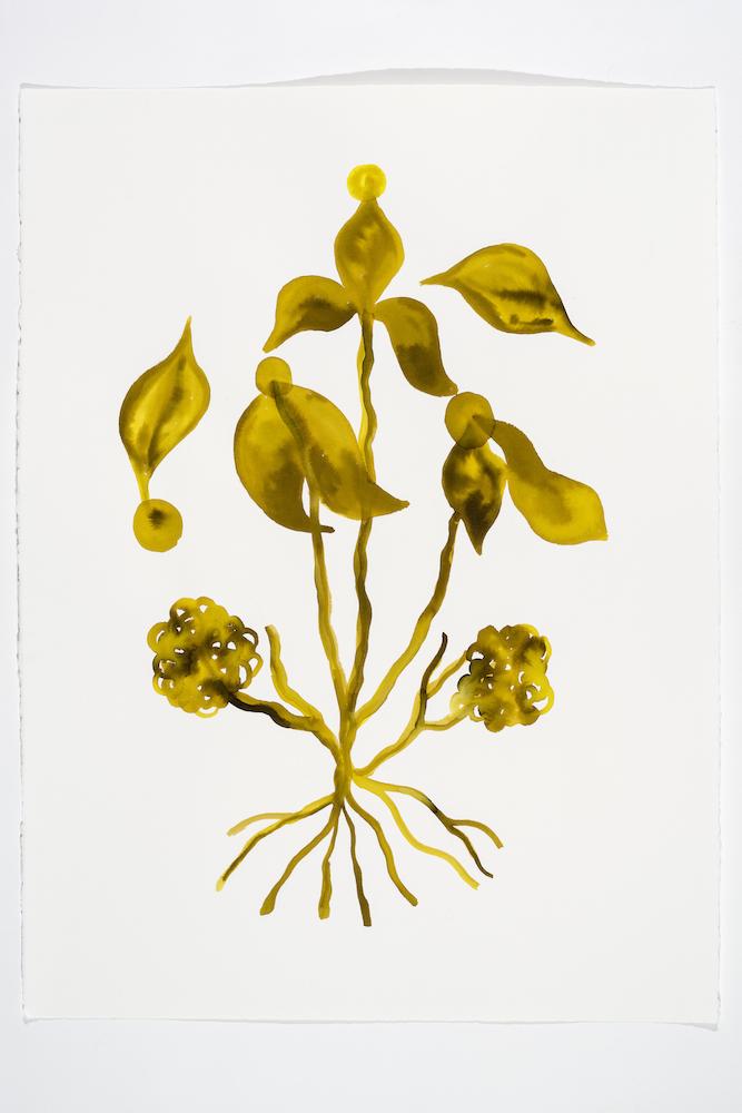 Serge Murphy, Illuminations 3, 2018, Encre sur papier Arches, 77 x 55 cm