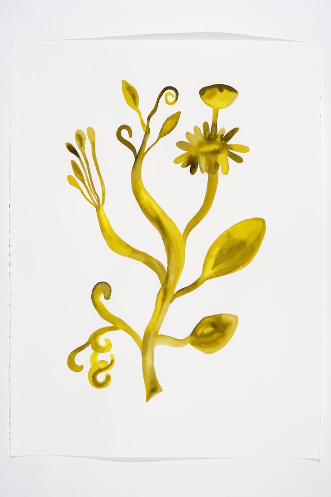 Serge Murphy, Illuminations 7, 2018, Encre sur papier Arches, 77 x 55 cm