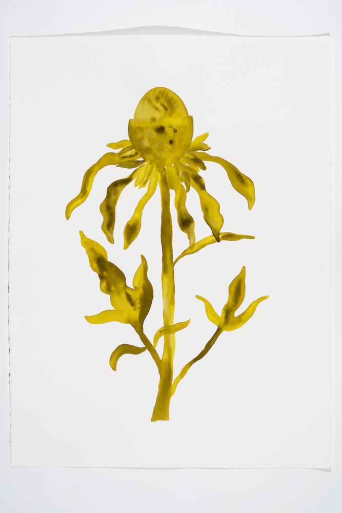 Serge Murphy, Illuminations 16, 2018, Encre sur papier Arches, 77 x 55 cm