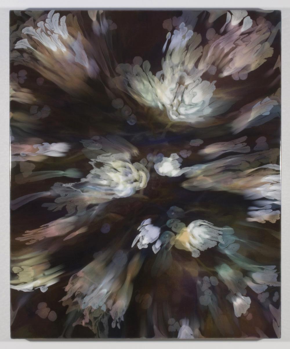 François Lacasse, Secrets floraux IX, 2019, acrylique et encre sur toile, 91,4 x 76,2 cm