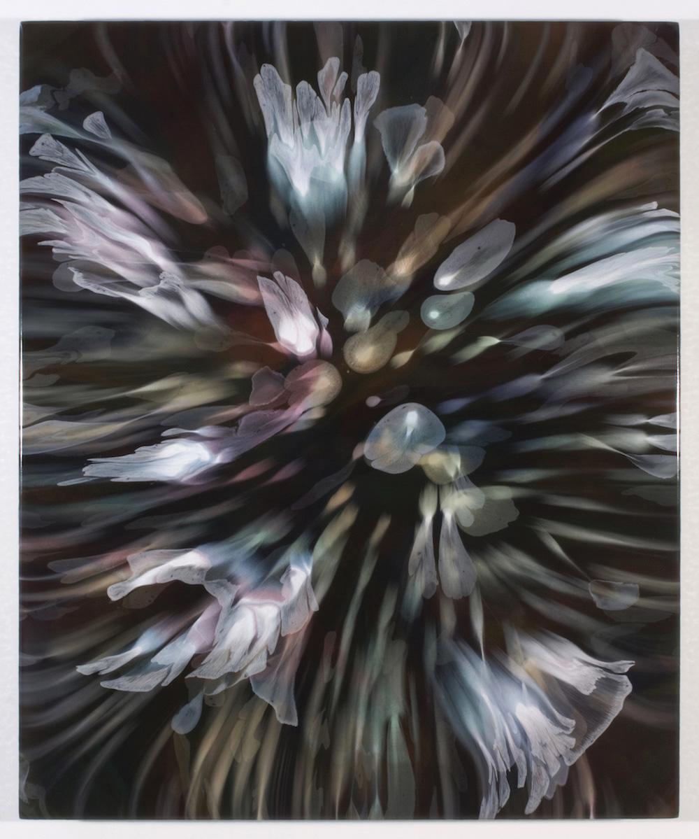 François Lacasse, Secrets floraux XI, 2019, acrylique et encre sur toile, 91,4 x 76,2 cm