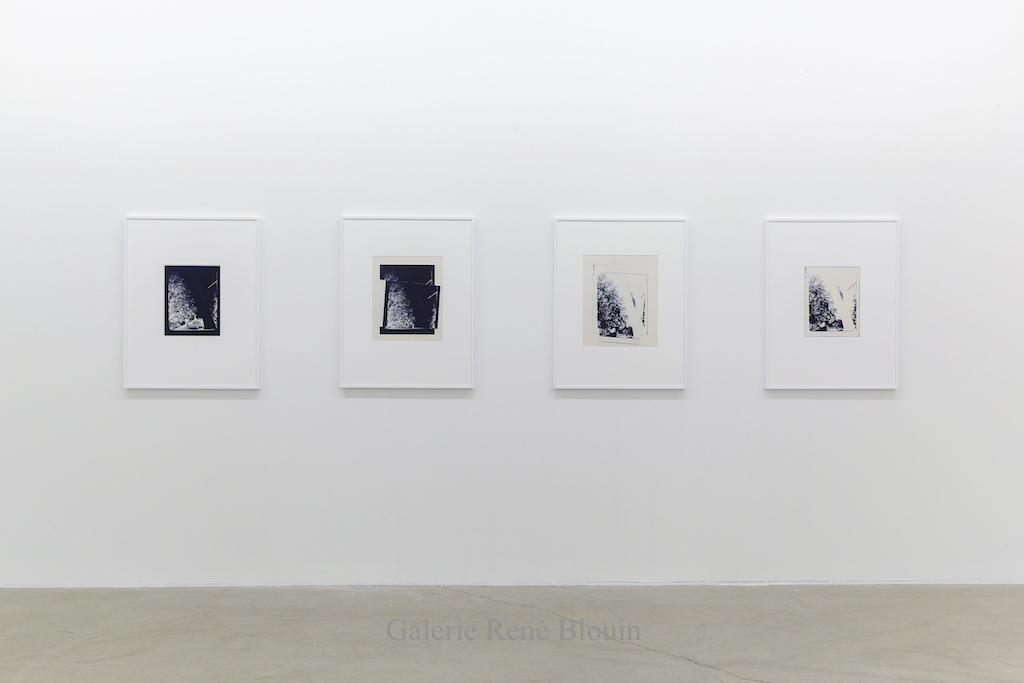 Vue d'installation, Galerie Rene Blouin, 2019